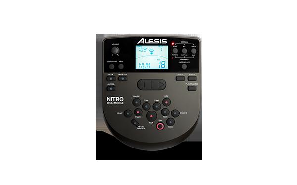 Top 5 tobe electronice pentru incepatori - Alesis DM6 Nitro Kit Module