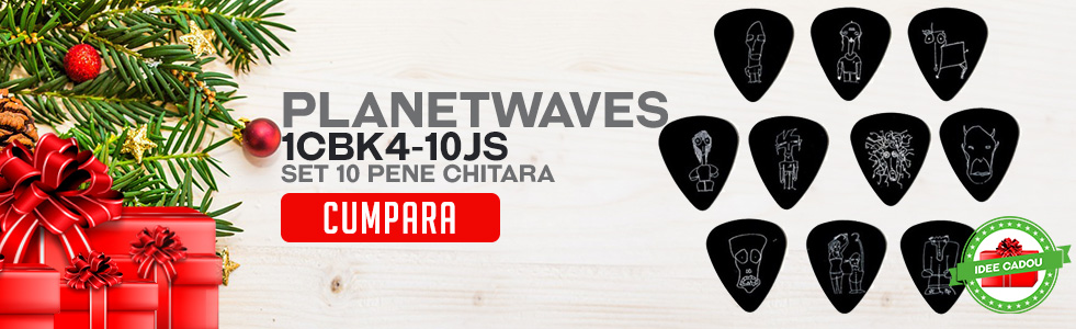 Idei de cadouri de Craciun - Set 10 pene chitara Planet Waves