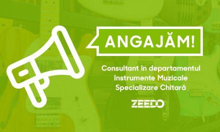 Angajam: Consultant Vanzari in Showroom – Departamentul Instrumente Muzicale – Specializare Chitara