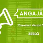 Angajam: Consultant Vanzari in Showroom – Specializare Chitara
